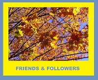 wpid-friends-followers-award2